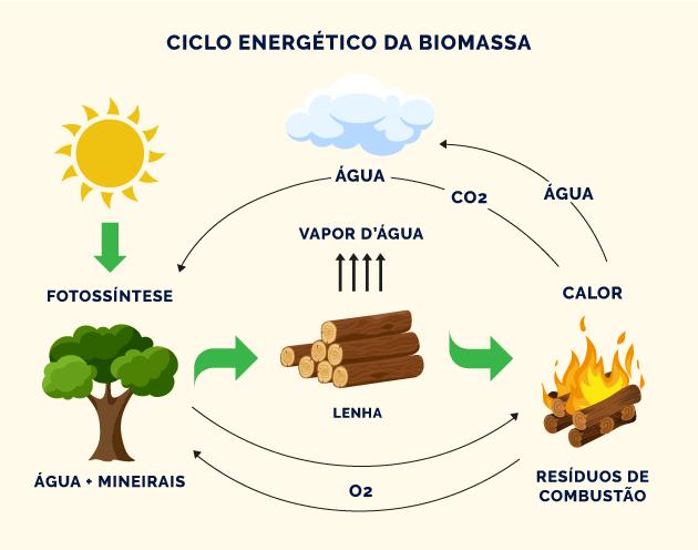 ciclo energético da biomassa